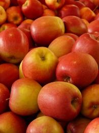 apple-5880_1920 (2)