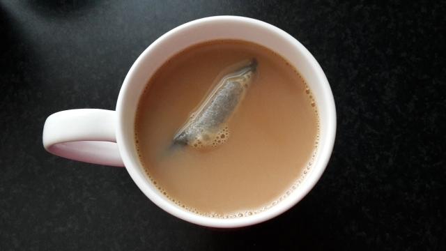 floating-tea-bag